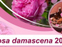 University of Kashan to Hold International Conference on Rosa Damascena 2019
